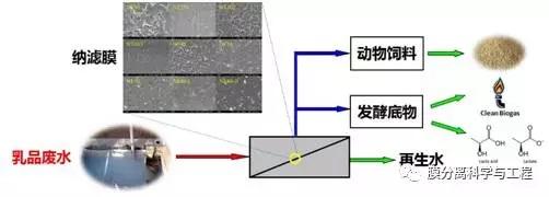 膜集成技术在乳品废水资源化中的应用